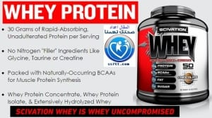 Whey Protein Scivation